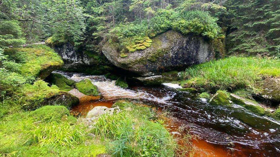 potok na Šumavě